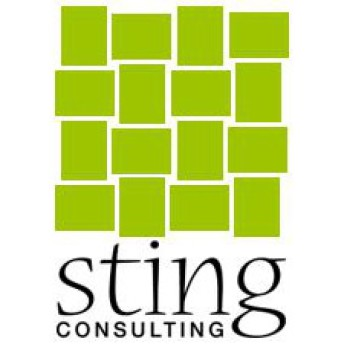 Sting Consulting GmbH